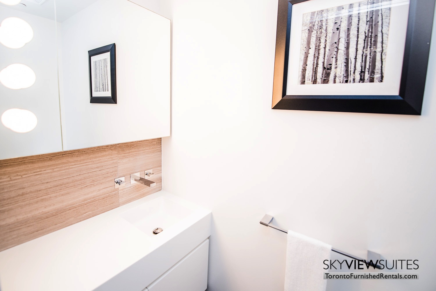 furnished-apartment- ktichen-waterfrontfurnished-apartment- ktichen-waterfrontfurnished-apartment- bathroom-Yorkville