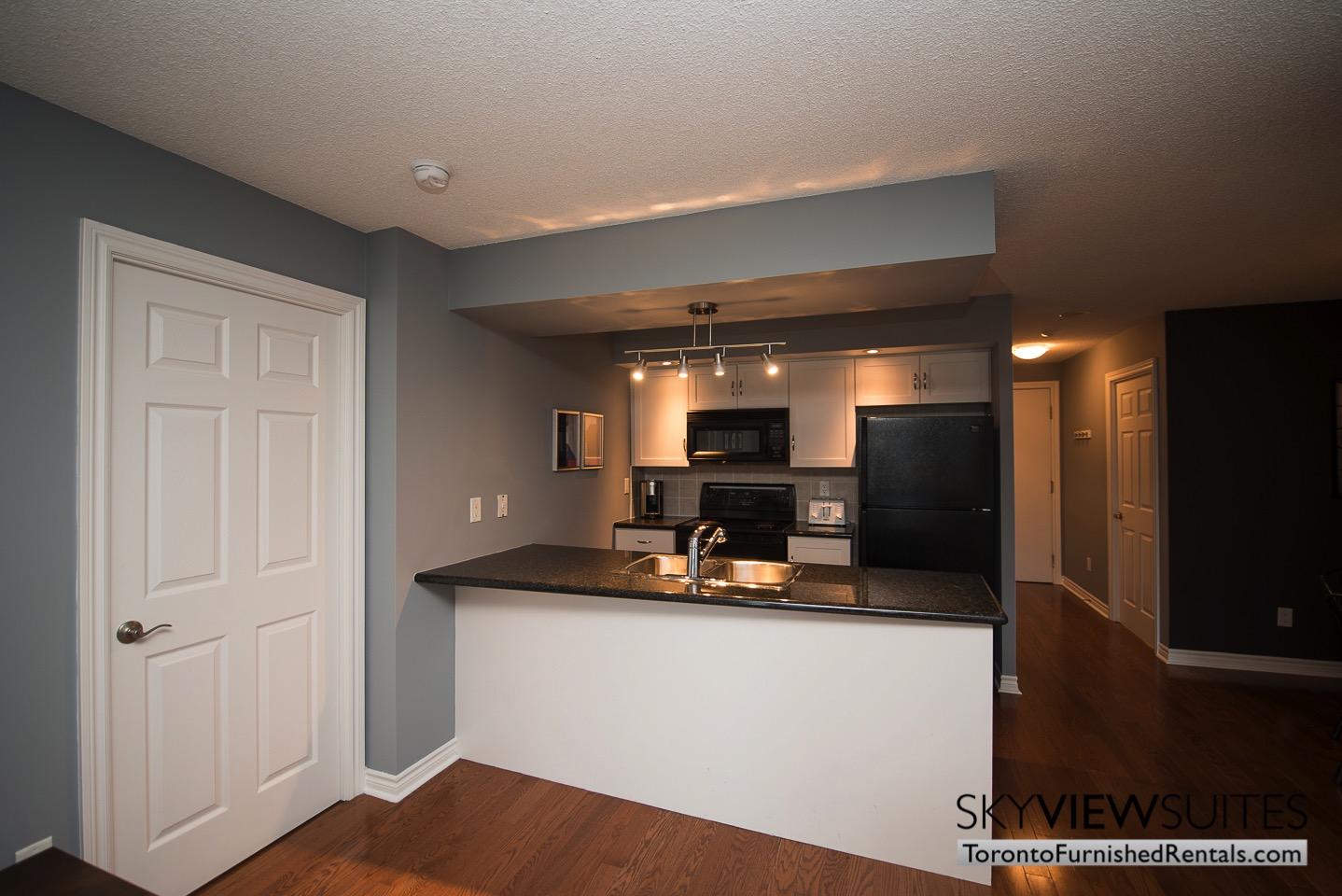 Wellington and Blue Jays Way executive rentals toronto kitchen