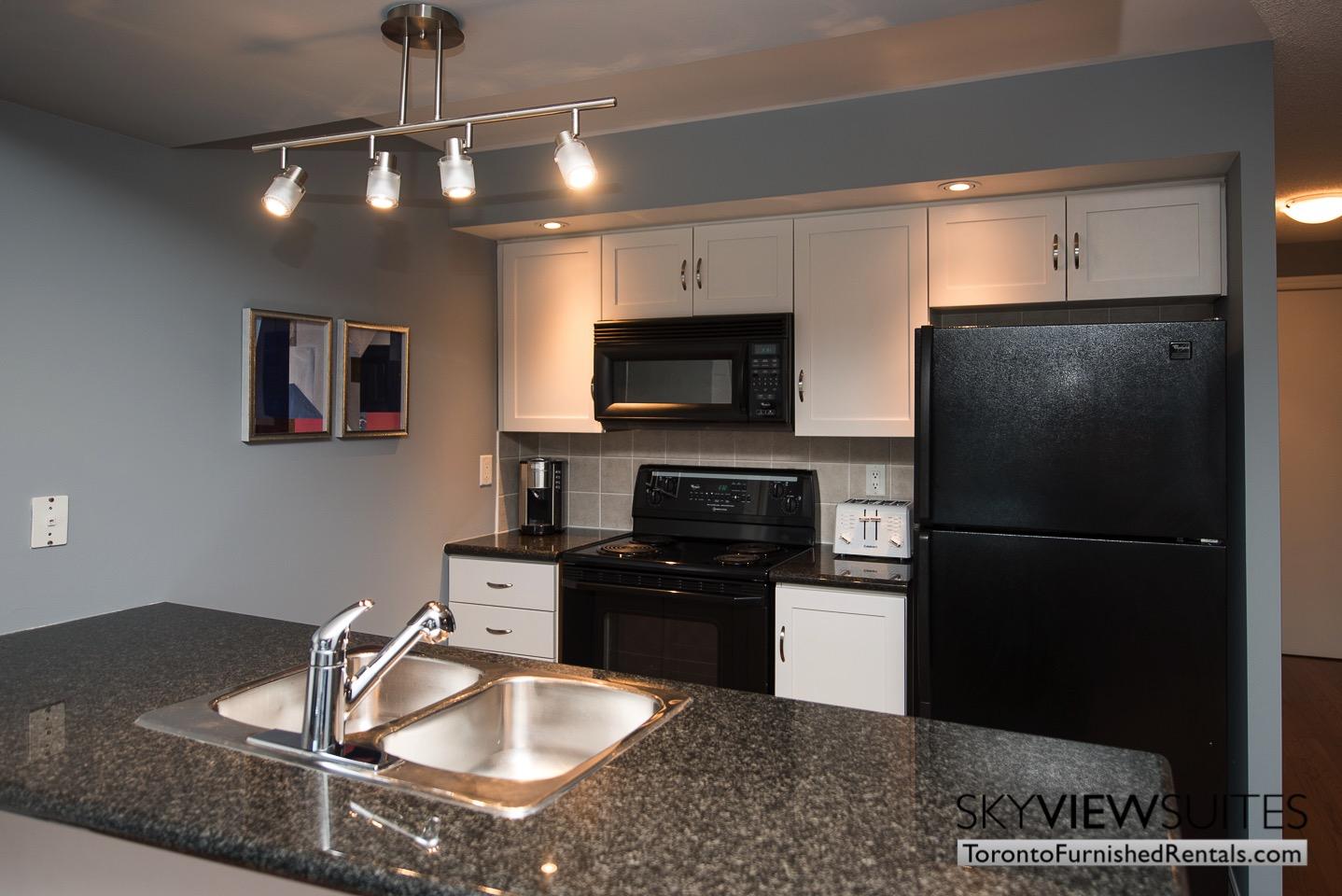 Wellington and Blue Jays Way executive rentals toronto kitchen applicances