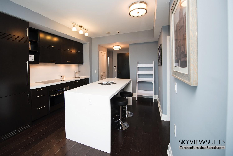 furnished apartments toronto Varsity kitchen