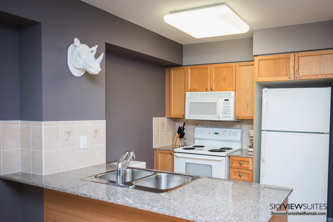 5940 Yonge Street furnished apartment toronto kitchen with rhino head