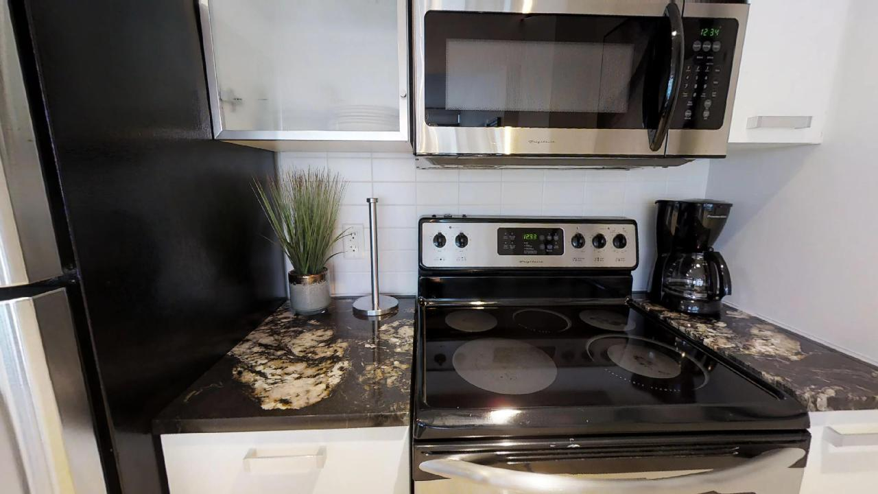 Stovetop and decorative plant in a toronto furnished condo, near bay and wellesley