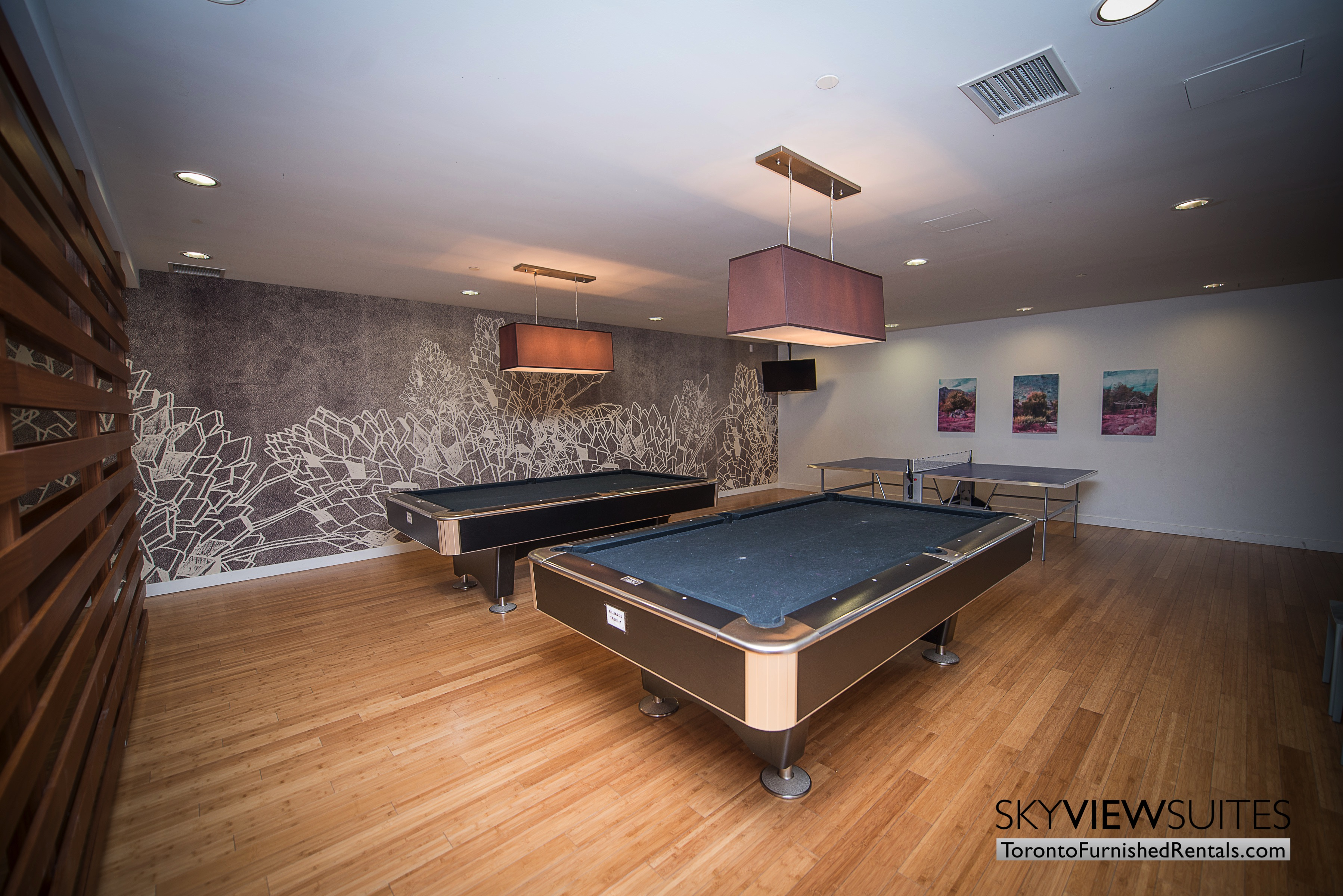 furnished apartments toronto parade amenities pool table