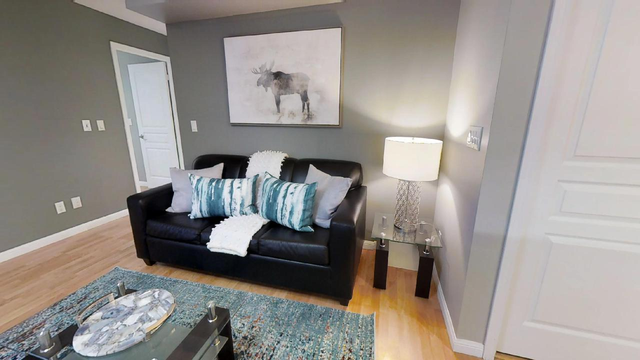 couch in university plaza toronto furnished apartment